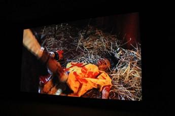 documenta-2012_507